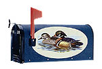 Graphic Mailboxes